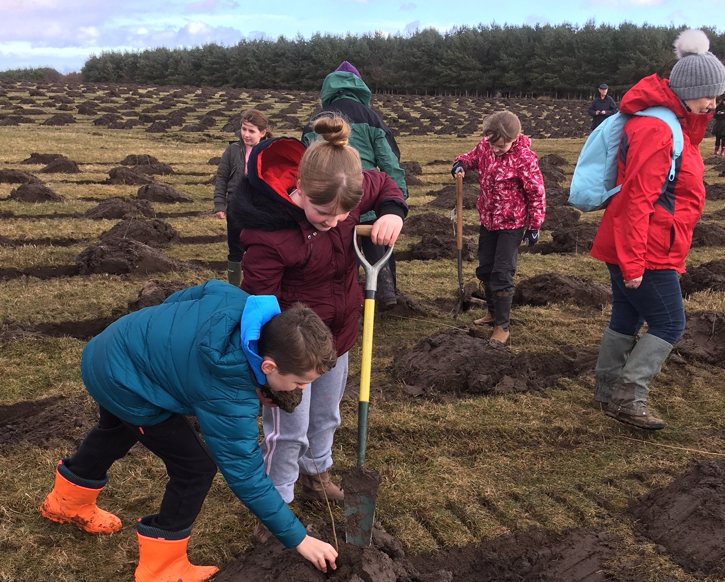 Children planting Doddington March 2018.jpg